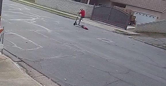 Police: Scooter rider who dragged small dog should be charged