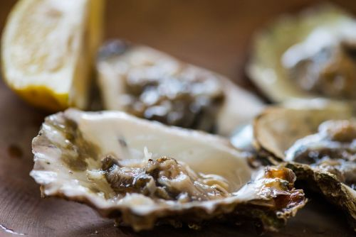 Bacterial infection kills man who ate raw oyster at Florida restaurant