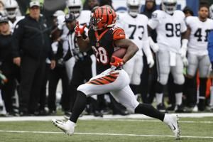 Bengals end 5-game losing streak, beat Raiders 30-16