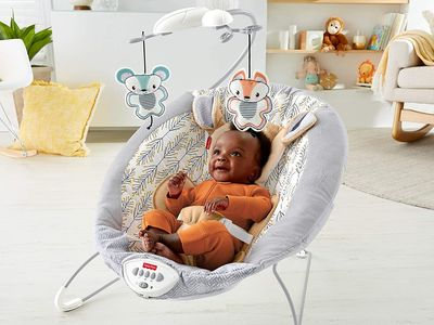 The best baby bouncers