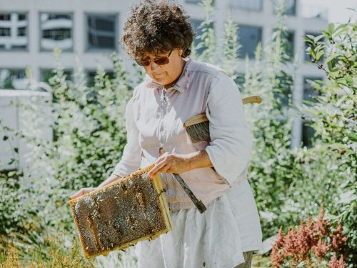 Job diary: I've been a beekeeper for 4 decades, co-founded an urban bee non-profit, and now I work at a hotel connecting the community through beekeeping