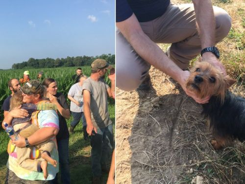 A dog stayed with a missing 3-year-old all night and helped rescue teams find her