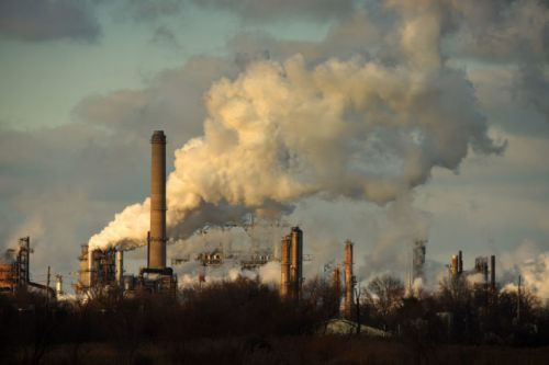 Poll shows consensus for climate policy remains strong