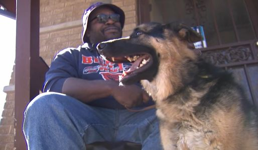 A group of teens stole this man's guide dog. Then one of them had a change of heart