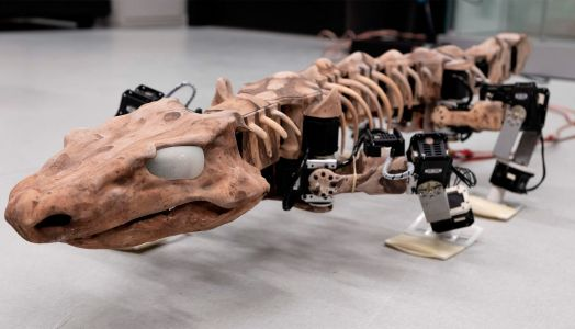 Lizard robot brings ancient creature to life
