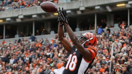 It's a boy! Bengals A.J. Green, wife welcome baby