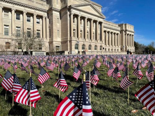 Gov. Beshear honors COVID victims during flag planting ceremony