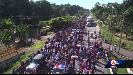 Davids: 'We need to follow the rules as they are right now' regarding massive migrant caravan