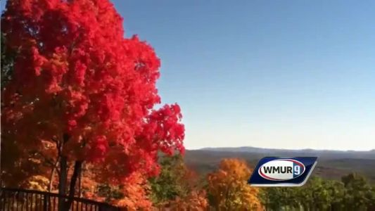 Recent weather points toward vibrant fall colors, UNH researcher says