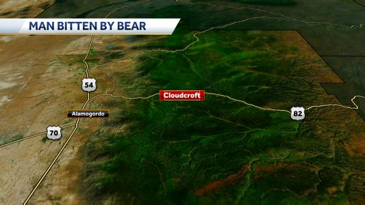Man bitten by bear in Cloudcroft