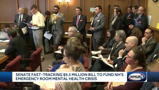 State Senate bill aimed at addressing shortage of mental health beds