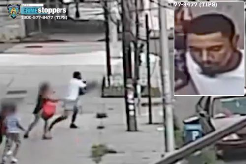 Creep who allegedly tried to abduct kid from Queens street arraigned