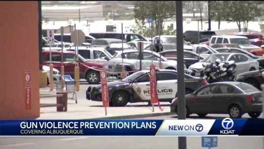 Albuquerque's plan to try and prevent a mass shooting