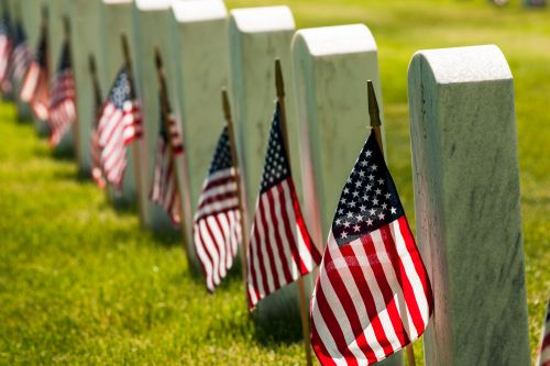 Woodchuck blamed for swiping flags from veterans' graves