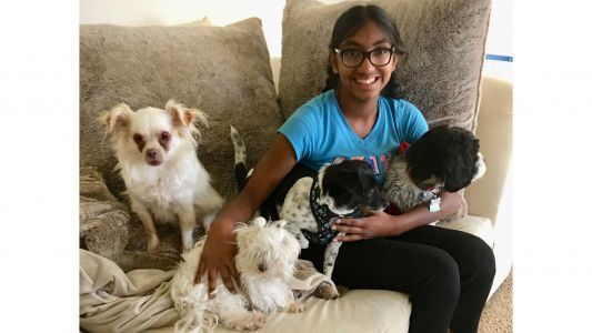An adopted 14-year-old girl is helping senior dogs find a forever home just like she did