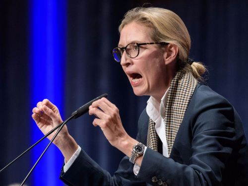 Meet Alice Weidel, the ex-Goldman Sachs banker who could lead a far-right party to its best German election result since the Nazis