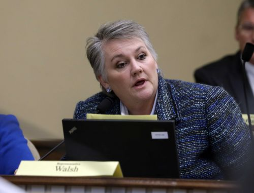 Washington state senator slammed for saying nurses 'play cards' for 'considerable amount of the day'