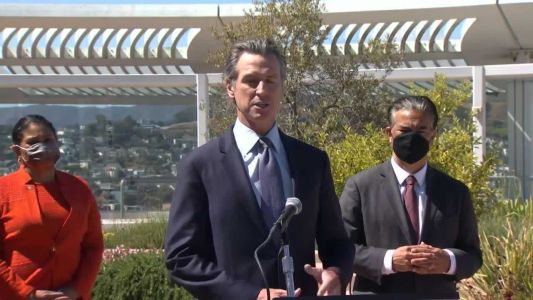'Stone-cold ideologue': California Gov. Newsom slams judge as state appeals assault weapons decision
