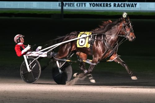 Bettor's Wish overcomes tough post to win Rooney at Yonkers
