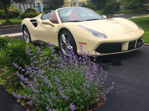 We drove a $393,000 Ferrari 488 Spider supercar. Here were its coolest features