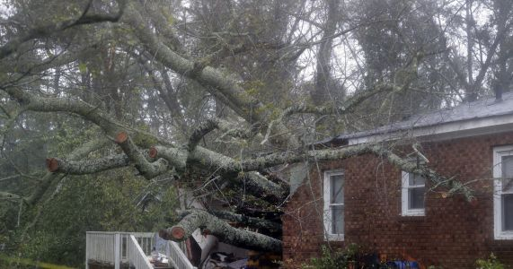 Mother, infant, among several killed by Hurricane Florence