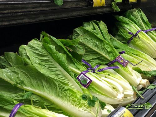 The romaine-linked E. coli outbreak is officially over, federal officials say