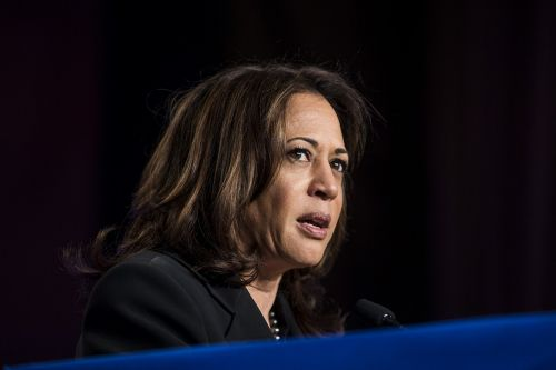 How Kamala Harris would address the maternal mortality crisis
