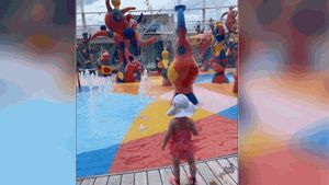 Grandfather will plead guilty in toddler's fatal fall on cruise ship