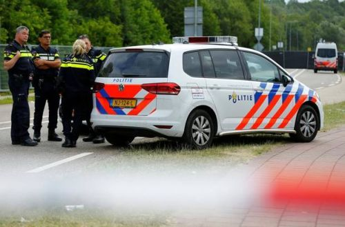 Dutch police arrest driver of delivery van that hit festival-goers