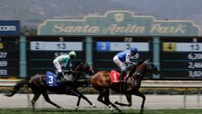 Governor Gavin Newsom Clears Way For Suspending Deadly Horse Racing Venue