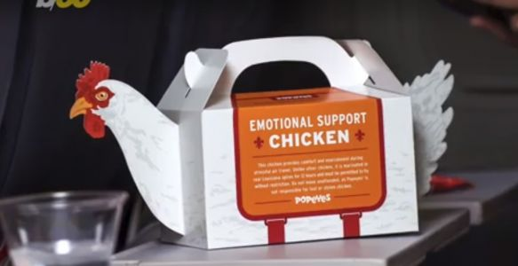 Popeyes introduces emotional support chicken to help with holiday travel