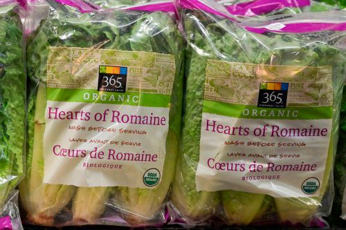 Bad batch of Romaine lettuce traced to single California farm