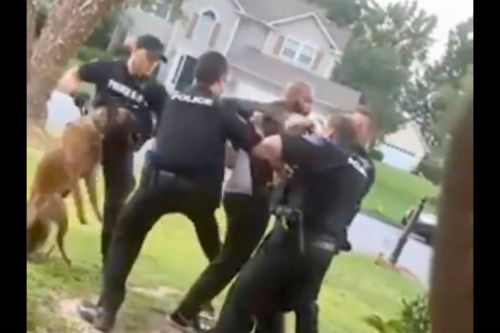 Video Shows Cops Use Police Dog On Handcuffed, Unarmed Black Man Having Mental Health Crisis