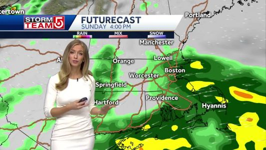 Video- Damp And Cool, Improvements For Memorial Day