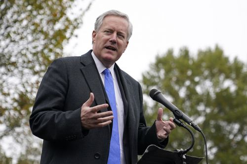 Meadows doubles down on pandemic remarks: 'We're not going to control it'