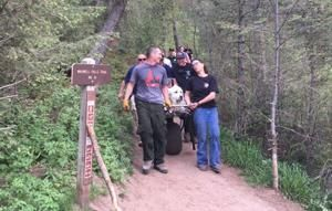 Dog days too much for dog rescued on hiking trail