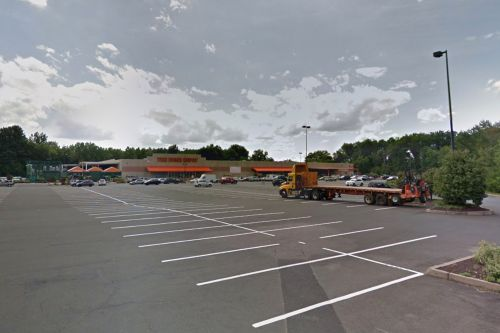 Cow slaughtered in Home Depot parking lot after escaping meat market