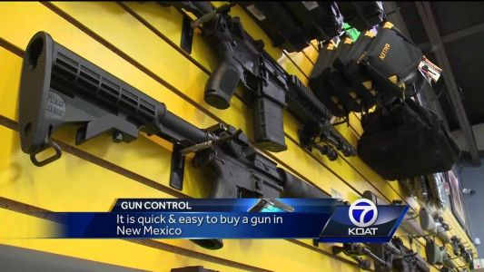 """City lawmakers want state to revisit """"Red Flag"""" gun ordinance"""